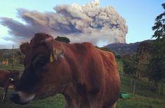 Volcán Turrialba registró fuerte explosión y su ceniza llegó hasta ...