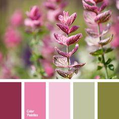 burgundy color, dark marsh, khaki color, light olive, olive color, pale pink, pastel shades matching, shades of green-marsh, shades of light pink, vintage colors.