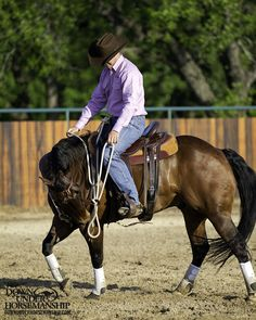 Riding Exercise #13: Bending With Vertical  Goal: For the horse to walk forward and around in a small circle while bending around your inside leg and keeping his nose tipped in laterally as well as vertically. Ideally, his nose should be softening toward the point of his shoulder.   More about the exercise: https://www.downunderhorsemanship.com/Store/Search/intermediate