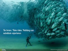 Be+brave+take+risks+nothing+can+substitute+experience.jpg (640×480)
