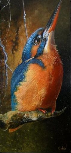 Common Kingfisher a. Eurasian Kingfisher a. River Kingfisher, Alcedo atthis - Across Eurasia and North Africa Small Paintings, Animal Paintings, Bird Paintings, Pretty Birds, Beautiful Birds, Vogel Illustration, Bird Drawings, Bird Pictures, Watercolor Bird