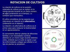 rotacion-de-cultivos-13603859 by Miguel Martínez via Slideshare