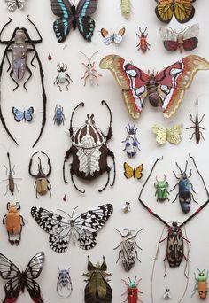 Nouvelles Summer: Beautiful Bugs et jolies plantes
