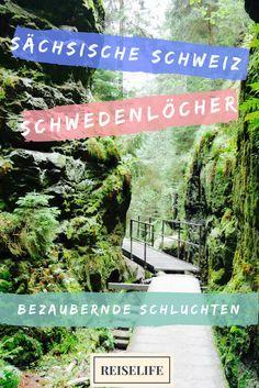 So wanderst du durch die Schwedenlöcher in der Sächsischen Schweiz. Eine atemberaubend schöne Wanderung, die du nicht verpassen solltest!