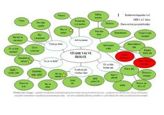 myšlenková mapa - září Montessori, Projects To Try, Education, September, Image, Maps, Literatura, Onderwijs, Learning