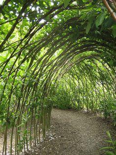 catepillar tunnel in children's garden Eden Project by AGA~mum, via Flickr