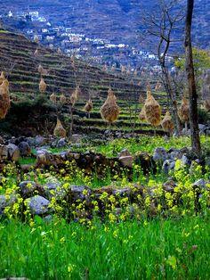 Pauri Garhwal district in Uttarakhand state,
