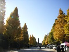 At Yasukuni