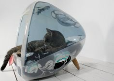 Repurposed Old desktop screen... Cat Bed.... hmmm this would work with a small dog as well