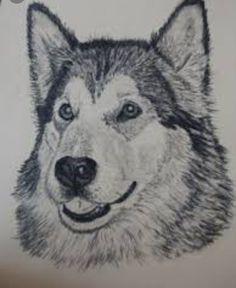 Een tekening is een duurzame neerslag van tekenmateriaal potlood, pen, penseel op een drager van papier, doek of plaat.