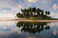 Tumblr - Pernambuco (by Pernambuco Foto Clube)