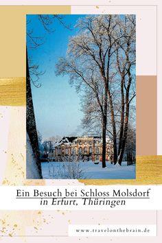 Ein richtig schönes Barockschloss in Mitteldeutschland ist Erfurts Schloss Molsdorf. Symmetrische Gärten, hübsche Skulpturen und die tollen Pastellfarbenen Hauswände mit feinen Ornamenten laden zum Verweilen ein. Es gibt auch ein Museum, Restaurant und eine Bibliothek. #molsdorf #schloss #schlossmolsdorf #erfurt #deutschland #thüringen #deutschlandreise