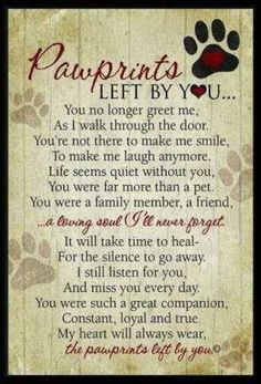 1000+ ideas about Losing A Pet on Pinterest | Pet Loss, Rainbow Bridge ...