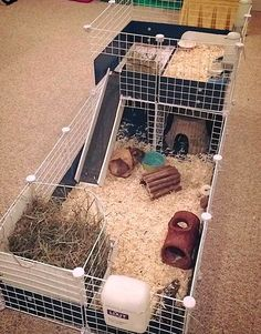 I would use fleece when I get my guinea pigs! But this cage is exactly what I want!😂🥰🥰can't wait to get my first piggies! Diy Guinea Pig Cage, Guinea Pig Hutch, Guinea Pig House, Pet Guinea Pigs, Guinea Pig Care, Rabbit Cage Diy, Diy Guinea Pig Toys, Guine Pig, Pig Habitat
