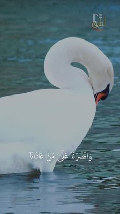 Muslim Love Quotes, Love In Islam, Quran Quotes Love, Quran Quotes Inspirational, Islamic Love Quotes, Faith Quotes, Quran Verses About Love, Beautiful Quran Verses, Beautiful Quotes About Allah