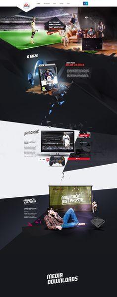 Fifa 2013 on Web Design Served