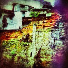 292 - Muro de Tijolos #umafotopordia #picoftheday #n8 #brasil #brazil
