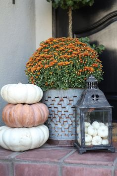 Favorites - White Pumpkins and Why I Love Them! Fall Decorating Ideas using White Pumpkins! Fall Decorating Ideas using White Pumpkins!