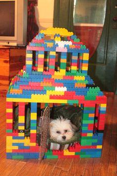 Lego dog kennel..