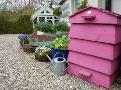 Pink bee hive!