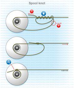 Predator fishing knots : Spool knot