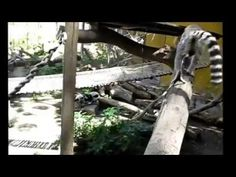 Los Dulces Lemures   Atraccion Del Zoo De Estepona