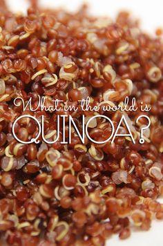 Learn exactly what Quinoa is and get ready to fall in love with this ancient {and gluten-free} grain!