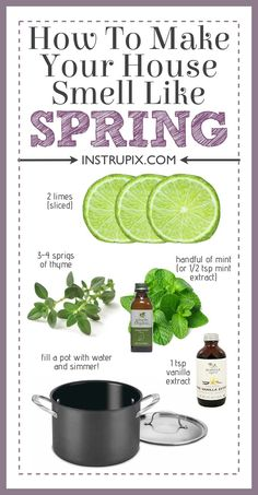 Household Cleaning Tips, Cleaning Recipes, House Cleaning Tips, Spring Cleaning, Cleaning Hacks, Deep Cleaning, Stove Top Potpourri, Simmering Potpourri, Fall Potpourri