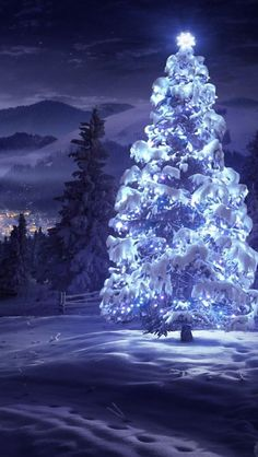 Merry Christmas Tree Wallpaper - Wish You a Happy New Year Happy New Year Images, pictures, Wishes, Quotes, Greetings Christmas Scenes, Noel Christmas, Winter Christmas, Christmas Lights, Outdoor Christmas, Christmas Lyrics, Purple Christmas, Christmas Music, Christmas Greetings