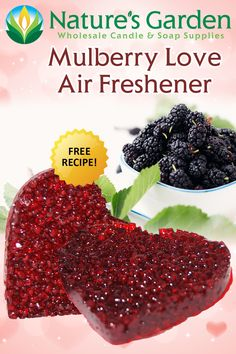 Mulberry Love Air Freshener Recipe is a free aroma bead recipe by Natures Garden Crafts. Learn how to make homemade air fresheners with sachet beads. Homemade Air Freshener, Aroma Beads, Soap Supplies, Candlemaking, How To Make Homemade, Garden Crafts, Creative Crafts, Free Food, Healthy Living