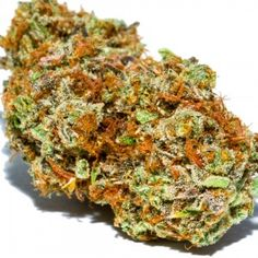 Heir to the Girl Scout Cookies throne is Sunset Sherbet Sativa, a hybrid with intoxicatingly potent effects. It inherits the genetic lineage of its Girl Scout Cookies parent and exhibits powerful full-body effects elevated by a jolt of cerebral energy. #medicalcannabis #healthy #healthylifestyle #cancer #Marijuana #Cannabis #PotValet #California #MedicalMarijuana #CannabisStrain #PotValetElmira #vacaville #fairfield #Vallejo