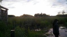 #Bellecampagne Sunset Walk #gilbert