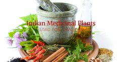 Indian plants used for oral health