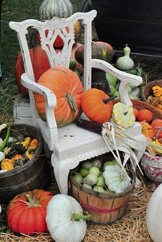 Display of pumpkins and gourds, fun with this wonderful chair