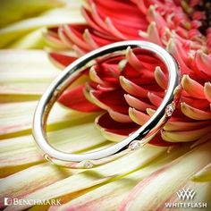 """Delightfully dainty, the Benchmark """"Spaced Eternity"""" Diamond Wedding Ring can be paired with your engagement ring or would work great in a stacking set. Adorned with Round Brilliant Diamond Melee this ring is perfect for those who prefer more subtle bling."""