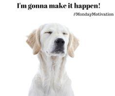#MondayMotivation - Who else is gonna shine today?