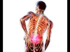 Причины боли в позвоночнике и способы лечения грыжи межпозвоночных дисков
