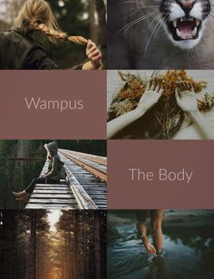 Ilvermorny: Wampus...  Argumentative, but exceptionally loyal Webster Boot named his house for the Wampus, a powerful, panther-like creature that was all but impossible to kill.