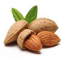 Nuts & Kernels – Agro Live Stock Farm Happy Pregnancy, Pregnancy Care, Healthy Kids, How To Stay Healthy, Calcium Rich Foods, Almond Nut, Green Tea Benefits, Snack Recipes, Healthy Recipes