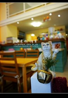 """#Taiwan  #catcafe #travel  """"There Is Cat"""" Cafe, Taichung, Taiwan"""