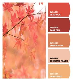 Instantly turn any picture into a palette with ColorSnap, created for you by Sherwin-Williams. Paint Color Combos, Colour Pallette, Color Palate, Colour Schemes, Color Patterns, Color Mixing, Color Combinations, Paint Colors, Design Seeds