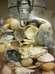 Seashells in clear jar.  All the seashells we picked up at the beach when Alex died.