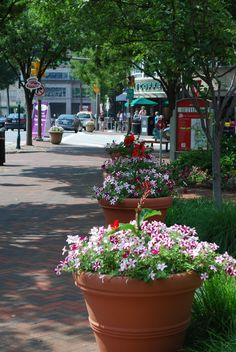 Bethesda, MD – A Neighborhood Guide