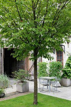 Concrete in its best / Skulpturfabriken in Gotland