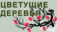Цветущий май Деревья цветущие в мае