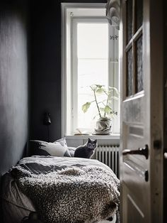 Step Inside a Monochrome Scandinavian Apartment