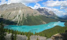 Peyto Lake (pea-toe) is a glacier-fed lake located in Banff National Park in the Canadian Rockies. Peyto Lake (pea-toe) is a glacier-fed lake located in Banff National Park in the Canadian Rockies. Banff Canada, Alberta Canada, Banff Alberta, Canada Canada, Visit Canada, Earth Photos, Nature Photos, Nature Nature, Mother Nature