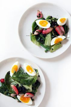 Spring radish and herb salad