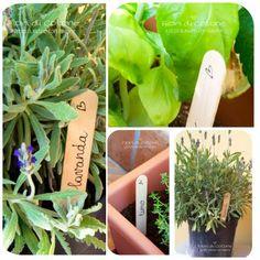 Etichette per le piante