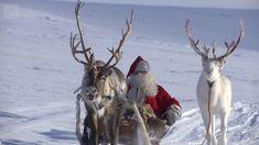 Ylen tuottama video vie sadat miljoonat tv-katsojat ympäri Eurooppaa perinteiseen tapaan seuraamaan joulupukin matkaanlähtöä.